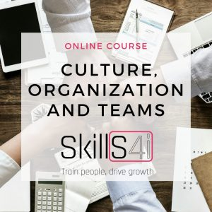Culture organization and teams